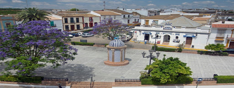manzanilla-municipio