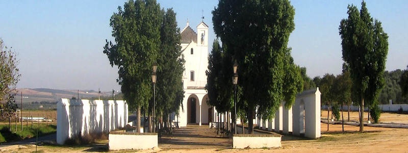 manzanilla-municipio1
